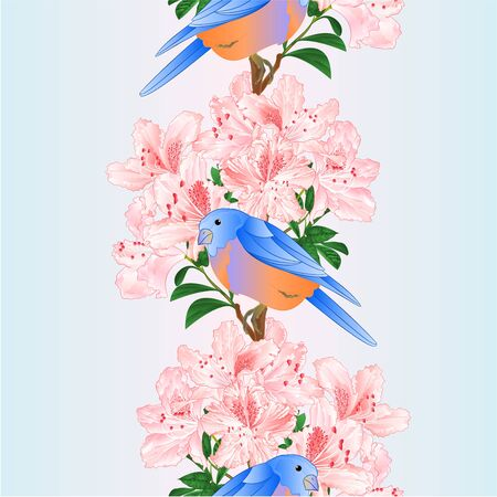 Vertical border seamless background small songbirdon Bluebird  thrush and light pink rhododendron spring background vintage vector illustration editable hand draw