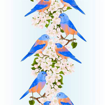 Vertical border seamless background bluebirds  thrush small bird on an apple tree branch with flowers spring background vintage vector illustration editable hand draw
