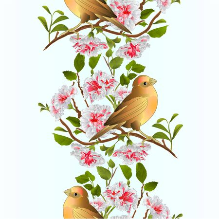 Vertical border seamless background small bird  thrush and branch white hibiscus  spring background vintage vector illustration editable hand draw 向量圖像