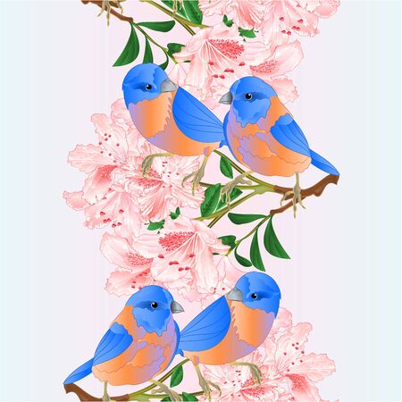 Vertical border seamless  of small  Bluebirds  thrush and light pink rhododendrons branch