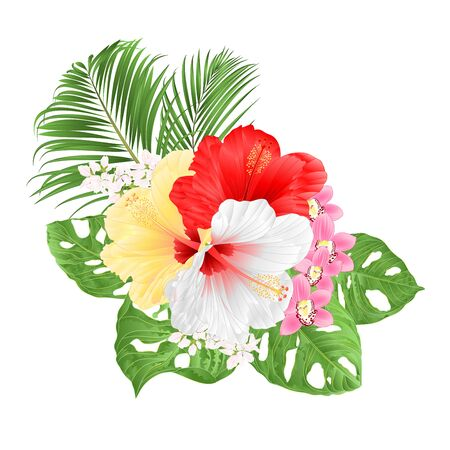 Tropical Hibiscus white yelow red and orchids Cymbidium pink flowers and Monstera and palm watercolor on a white background vintage vector illustration editable hand draw Vector Illustration