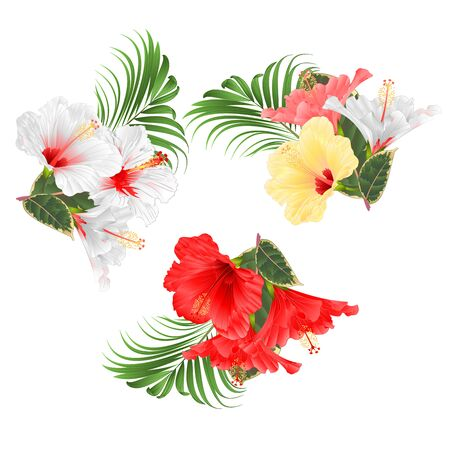 Tropical flowers floral arrangement, with white red various hibiscus and ficus and palm set watercolor on a white background vintage vector illustration editable hand draw Ilustración de vector