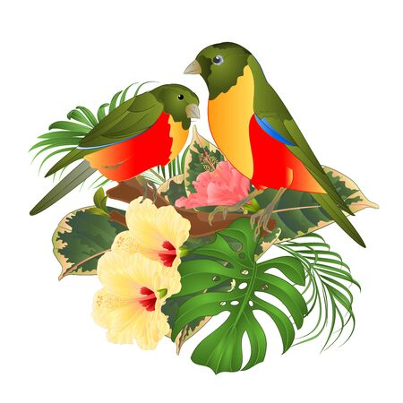 Two tropical birds bouquet with tropical flowers hibiscus on a branch palm,philodendron on a white background vintage vector illustration editable hand draw