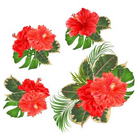 Bouquet with tropical flowers set floral arrangement with beautiful pink hibiscus corrugated palm,philodendron and ficus set vintage vector illustration editable hand draw