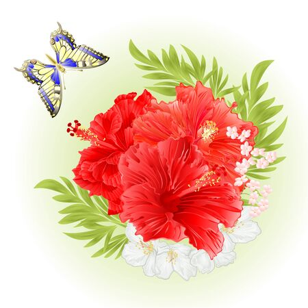 Pink hibiscus tropical flowers  with jasmine flowers and butterfly watercolor vintage  vector editable illustration hand drawn