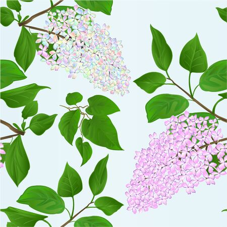 Seamless texture twigs Lilac multicolored and light pink with flowers and leaves on a white background vintage vector illustration hand draw  editable