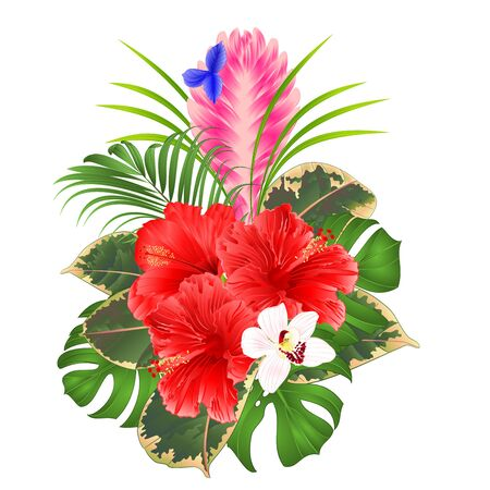 Tillandsia cyanea and orchids cymbidium and hibiscus  bouquet with tropical flowers palm,philodendron on a white background vintage vector illustration editable hand draw