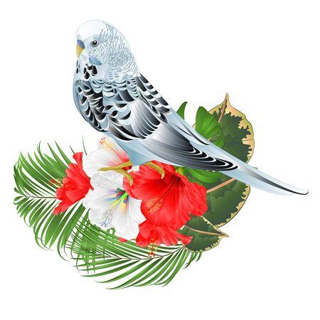 Blue parakeet Budgerigar  and hibiscus and palm   vector Иллюстрация