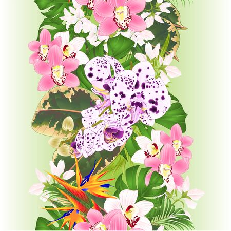 Vertical border seamless background tropical flowers  floral arrangement with beautiful Strelitzia  and white and pink orchids Cymbidium and phalaenopsis  palm,philodendron and ficus vintage vector illustration  editable hand draw