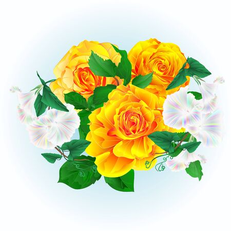 Bouquet  yellow roses and Morning glory  on a blue background watercolor vintage vector botanical illustration editable hand draw 向量圖像