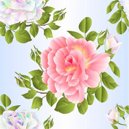 Seamless texture bouquet colored and pink roses and buds  on a white background watercolor vintage vector botanical illustration editable hand draw