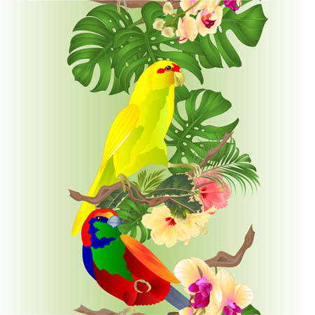Budgerigar green pet parakeet or shell parakeet or budgie home pet and Brugmansia palm,philodendron,watercolor on a white background vintage vector illustration editable hand draw