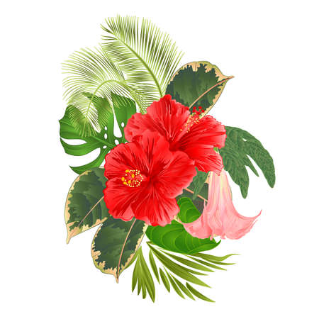 Tropical flowers  floral arrangement, with   pink hibiscus and Brugmansia  palm,philodendron  vintage vector illustration  editable hand draw