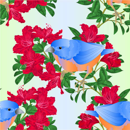 Seamless texture bluebird  small  bird and red rhododendron watercolor spring background vintage vector illustration editable hand draw