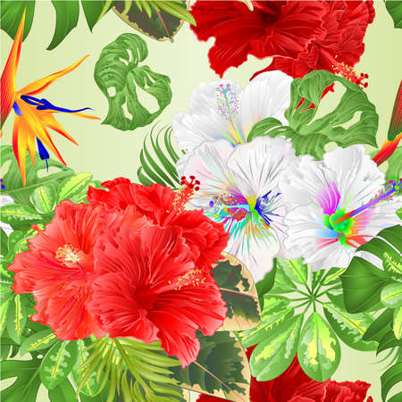 Seamless texture bouquet with tropical flowers floral arrangement, with beautiful pink red multicolored hibiscus and Strelitzia Schefflera ,philodendron and ficus natural background vintage vector illustration  editable hand draw Иллюстрация