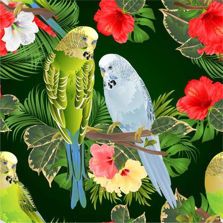 Seamless texture birds Budgerigars, home pets ,gren and blue pets parakeets  on a branch bouquet with tropical flowers hibiscus, palm,philodendron on a white background vintage vector illustration editable hand draw