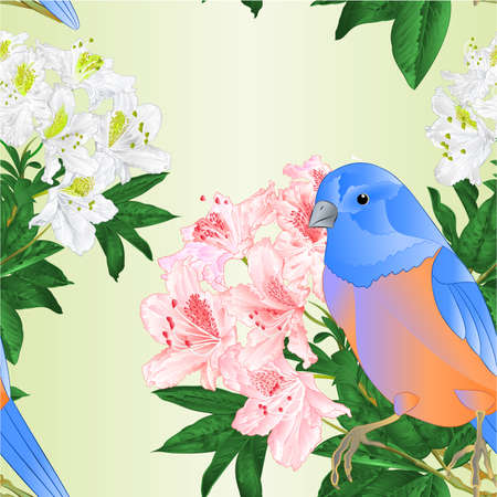 Seamless texture bird small Bluebird  thrush and light pink  and white rhododendron watercolor spring background vintage vector illustration editable hand draw Illustration