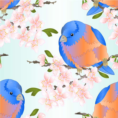 Seamless texture bird small  thrush  Bluebird  watercolor on a sakura cherry branch pink  flower with leaves sprig background  vintage vector illustration editable hand draw
