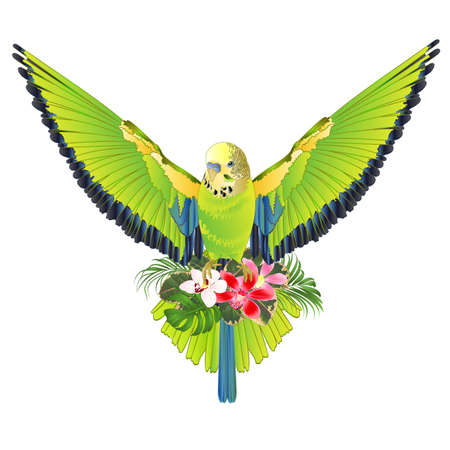 Seamless texture green bird  flying budgerigar,green pet parakeet  or budgie or shell parakeet home pet natural and orchids cymbidium palm,philodendron and ficus vintage vector illustration editable hand draw Иллюстрация