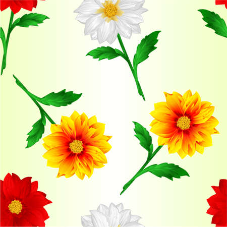 Seamless texture Dahlia red white yellow summer flowers stems various colors for spring season as graphic elements and decorations nature background vector illustration vector illustration editable hand draw