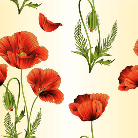 Seamless texture red poppies flowers with bud flowering  bouquet of wildflowers watercolor vintage vector illustration editable hand drawn
