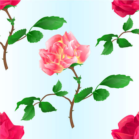 Seamless texture pink rose  with orange center  and red rose stem with leaves and blossoms watercolor on blue background vintage vector illustration editable hand draw