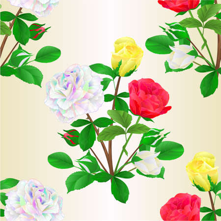 Seamless texture bouquet of roses and rosebuds red white and yellow on   white background watercolor vintage vector botanical illustration editable hand draw Vectores