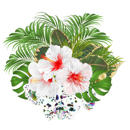 Bouquet with tropical flowers  floral arrangement, with white   hibiscus and multicolored orchid palm,philodendron  watercolor vintage vector illustration  editable hand draw