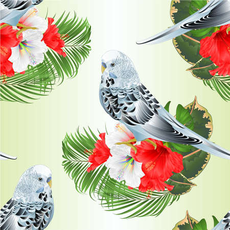 Seamless texture blue  parakeet Budgerigar, home pet , pet parakeet  or budgie  with tropical flowers  floral arrangement with beautiful white and red hibiscus and  palm,philodendron  ficus vintage vector illustration  editable hand draw