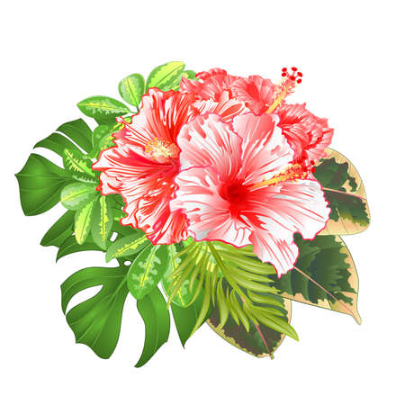 Bouquet with tropical flowers floral arrangement, with beautiful  red and white   hibiscus, Schefflera ,philodendron and ficus natural background vintage vector illustration  editable hand draw