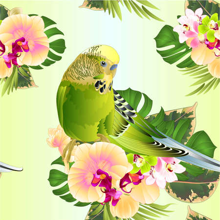 Seamless texture budgerigar, green pet parakeet  or budgie or shell parakeet home pet with tropical flowers yellow orchid Phalaenopsis and  cymbidium palm,philodendron  watercolor vintage vector illus Ilustração