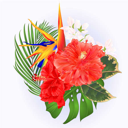 Tropical flowers bouquet with pink hibiscus and   Strelitzia reginae  palm monstera  watercolor vintage vector illustration editable hand draw Stock Illustratie