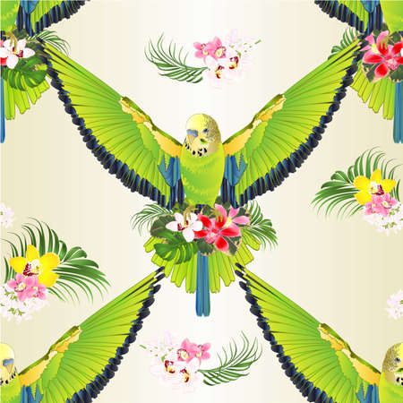 Seamless texture green bird  flying budgerigar,green pet parakeet  or budgie or shell parakeet home pet  and orchids cymbidium palm,philodendron and ficus vintage vector illustration editable hand draw