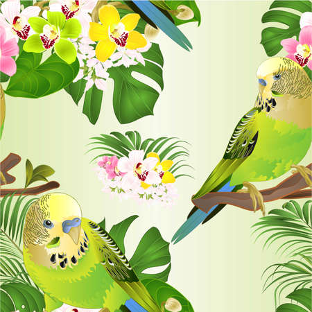Seamless texture green parakeets Budgerigars home pet ,   or budgie  and Orchids cymbidium with tropical palm and philodendron   watercolor vintage vector