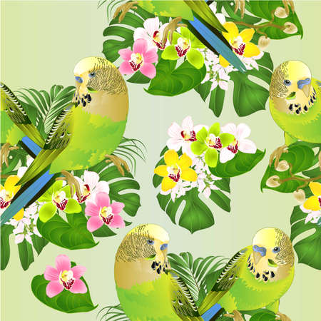 Seamless texture Parakeets green Budgerigars home pets ,or budgie or shell parakeet  and Orchids cymbidium with tropical palm and philodendron   watercolor vintage vector illustration editable hand draw