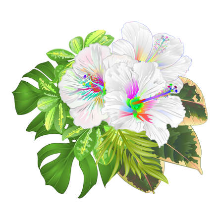 Bouquet with tropical flowers floral arrangement, with beautiful multicolored   hibiscus, Schefflera ,philodendron and ficus natural background vintage vector illustration  editable hand draw