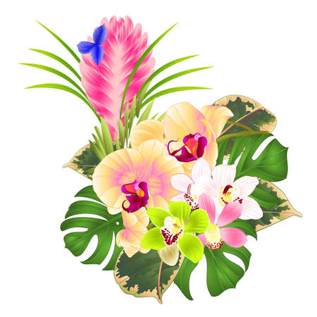Tropical flowers yellow orchid Phalaenopsis and  cymbidium various and Tillandsia bouquet with palm,philodendron on a white background vintage vector illustration editable hand draw