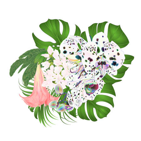 Bouquet with tropical flowers  floral arrangement, with beautiful multicolored orchid, palm,philodendron and Brugmansia  vintage vector illustration  editable hand draw