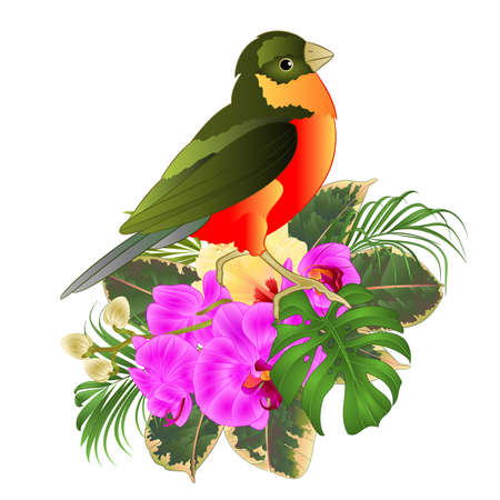 Tropical bird with tropical flowers   floral arrangement, with beautiful orchid and yelow hibiscus,palm,philodendron and ficus vintage vector illustration  editable hand draw