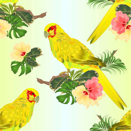 Seamless texture bird Parrot in Yellow Indian Ringneck on branch with tropical flowers hibiscus, palm,philodendron watercolor on a white background vintage vector illustration editable Hand draw