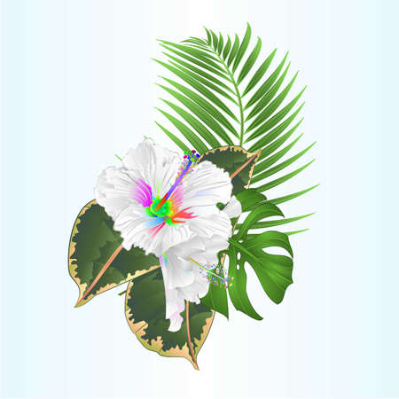 Bouquet with tropical flowers  floral arrangement with beautiful multi colored hibiscus  and  palm,philodendron  ficus vintage vector illustration  editable hand draw