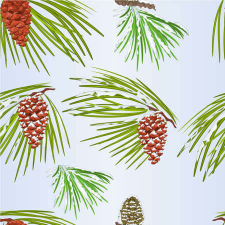 Seamless texture branches White pine and  cones and snow Christmas tree vintage vector illustration editable hand draw