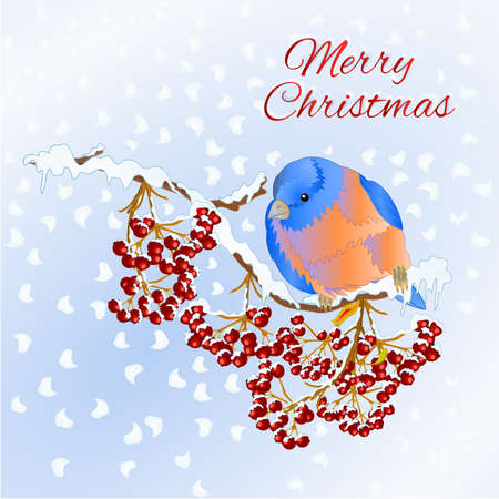 Merry christmas lettering  new year holiday celebration design with rowan red berries and bird on branch covered with snow seasonal sale advertising element vintage vector illustration editable hand draw