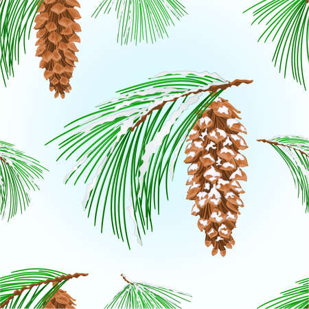 Seamless texture branches  Eastern White pine and  cones and snow Christmas tree vintage vector illustration editable hand draw