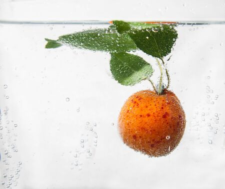 water plants: Apricot in water with bubbles.