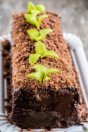 yule log: Chocolate cake in the form of logs decorated with chocolate chips and leaves of fondants.