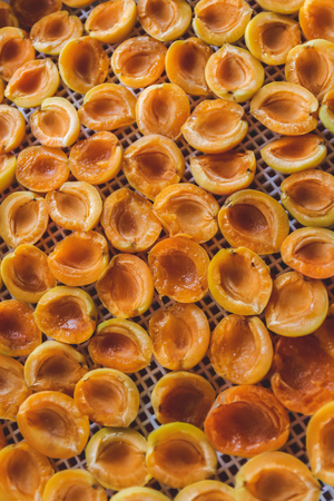 Apricot dried in the dryer-dehydrator. A way to preserve vitamins. Vegetarian meal, healthy and useful.