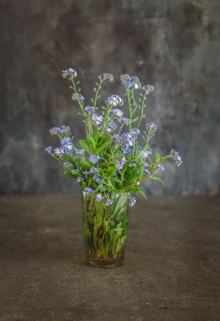 forget-me-not flowers in a vase on a dark background. Stock Photo
