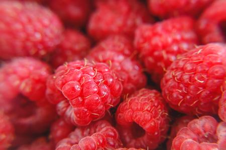 Background of bright juicy ripe red raspberries.