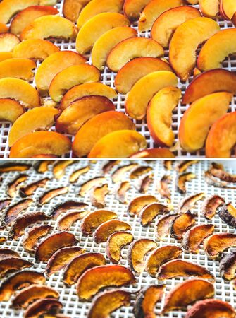 Peaches dried in a dehydrator dryer. A way to preserve vitamins. Vegetarian meal, healthy and useful.